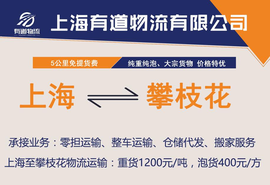 上海到攀枝花物流公司-上海有道物流